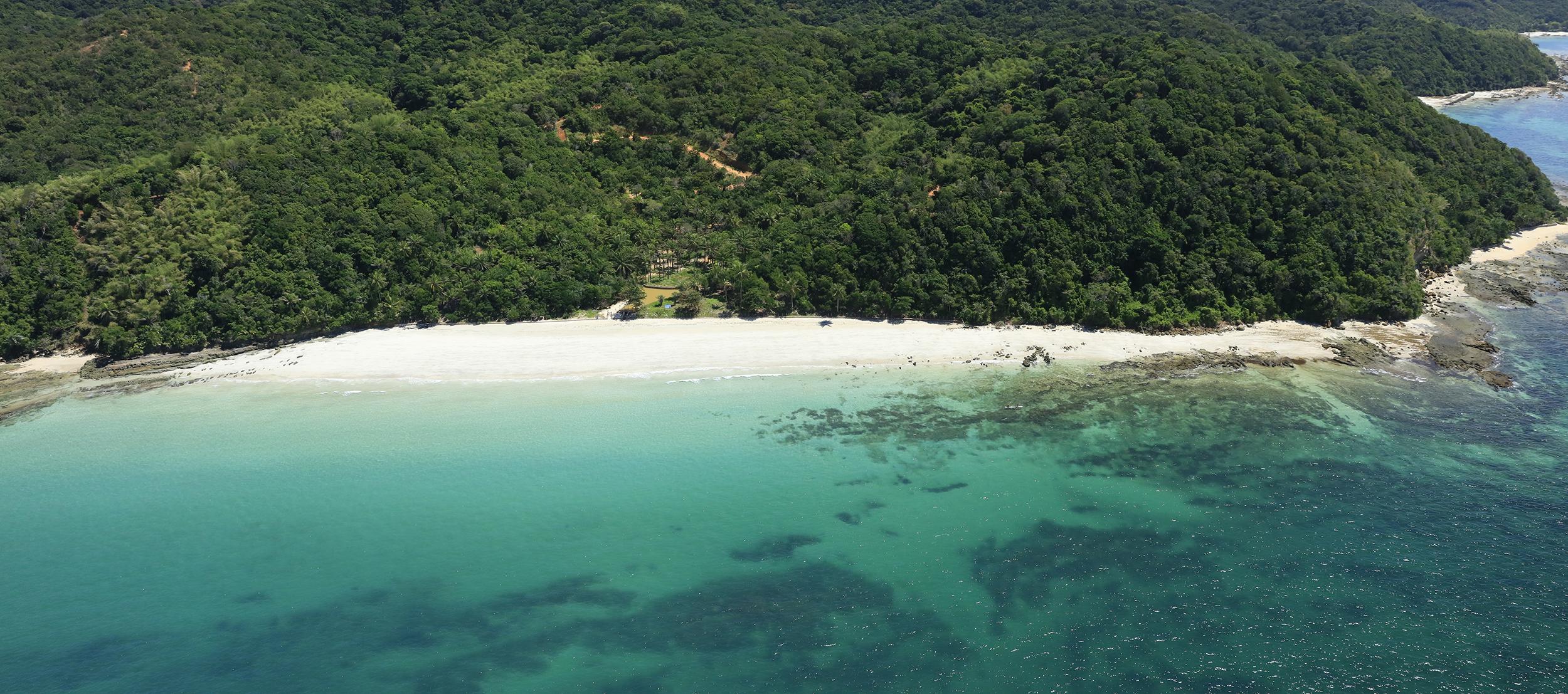 Bahia Pesca e Fundação Baía Viva liberam alevinos no mar da Ilha dos Frades